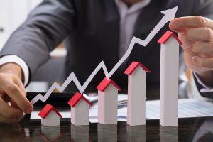 growing-house-portfolio